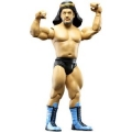 wwe classics series 26 the sheik
