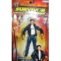 wwe survivor series 2003 eric bischoff