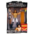 wwe deluxe aggression paul burchill